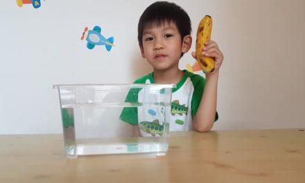 用香蕉,做實驗